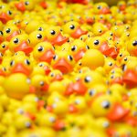 Debt Claims - get your ducks in a row